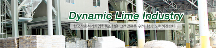 Dynamic Lime Industry